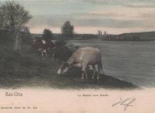 carte-postale-bas-oha-031